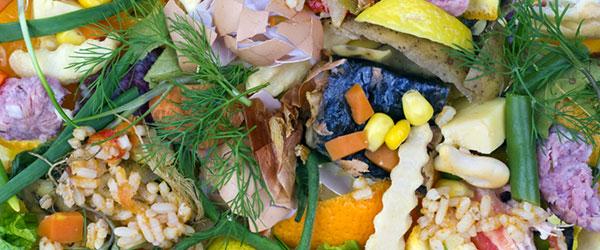 composting photo